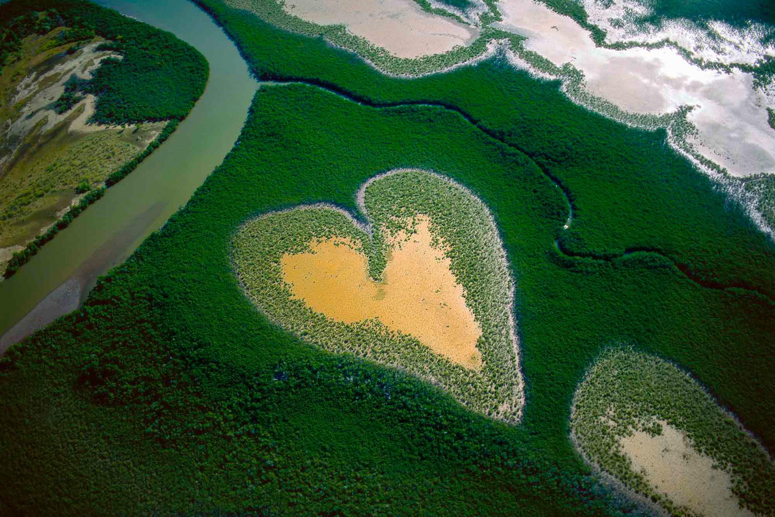 « Chacun est responsable de la planète et doit la protéger à son échelle » Yann Arthus-Bertrand